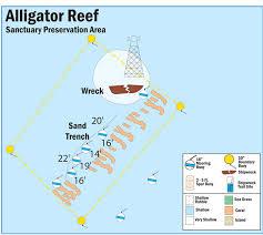 alligators in map of buoys in alligator reef sanctuary preservation area