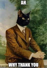 Cat Suit Meme - cat in a suit says imgflip