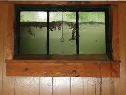 flooded window wells what to do