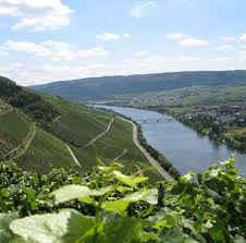 moselle moselle moselle
