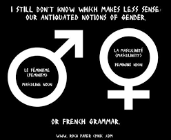 Chaise Masculine Or Feminine 88 Best Noun Gender Images On Pinterest French Grammar French