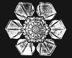 snowflake bentley ο κύριος χιονονιφάδας wilson alwyn u201csnowflake u201d bentley 1865 u20131931