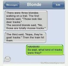 Blonde Moment Meme - 39 best dumb blonde jokes images on pinterest ha ha funny stuff