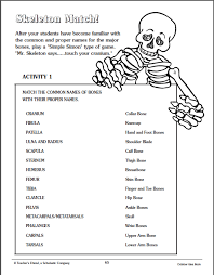 skeletal system human body skeletal and muscular system worksheet