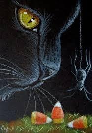 cat halloween picture cat art u003d u003d