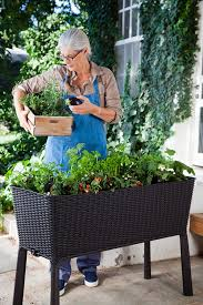 Raised Patio Planter by Amazon Com Keter Easy Grow Patio Garden Flower Plant Planter