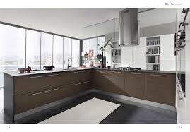 Gray Blue Kitchen Cabinets Kitchen Exquisite Design Modern Home Kitchen Ideas Brown Wooden
