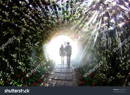 Couples Walking Flower Tunnel Stock Photo 91276919 Shutterstock