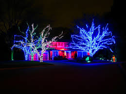 led landscape tree lights christmas outdoor led lights a remarkable look to your location