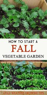 624 best gardening in fall u0026 winter images on pinterest veggie