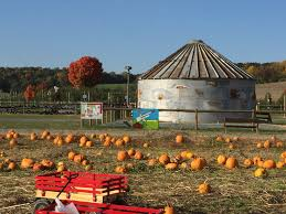 Local Pumpkin Farms In Nj by Grim U0027s Orchard Pick Your Own Family Farm Breinigsville Pa