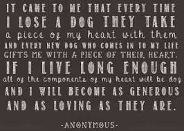 coping with loss of pet 7 sympathy quotes to help cope with of a pet yourtango