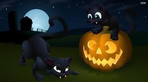 halloween kitten background 1920x1080 black kitten and a jack o039 lantern walldevil