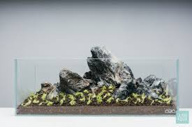 Tank Aquascape Ultum Nature Systems 5n Planted Nano Tank Gallery Glass Aqua