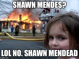Shawn Meme - disaster girl meme imgflip