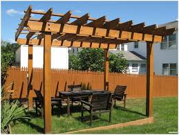 backyard vineyard trellis best 25 grape vine trellis ideas on