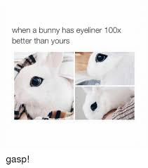 Eyeliner Meme - when a bunny has eyeliner 100x better than yours gasp bunnies