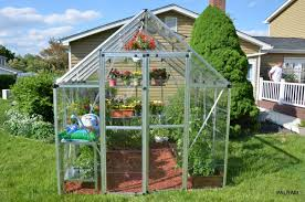 Hobby Greenhouses Palram Snap U0026 Grow 8 Ft W X 8 Ft D Greenhouse U0026 Reviews Wayfair