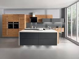 Zebrano Kitchen Cabinets Zebrano Wood Kitchen Cabinets Black Gloss Wood Kitchen Cabinets