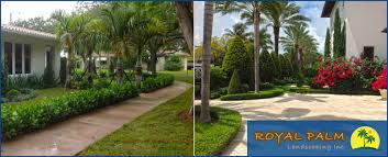 Landscaping Company In Miami by Palm Landscaping Inc Is A Landscaping Company In Hialeah Fl