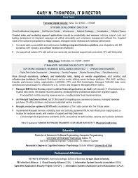 Help Desk Sample Resume by Sample Resume For It Professional 7 Professional Resume Sample It
