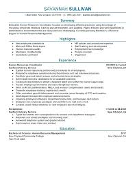 sample of a perfect resume hr coordinator resume example human