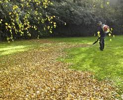 Fall Cleanup Landscaping by Fall Leaf Cleanup U2013 Landscape Contractors For Glen Ellyn And