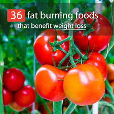 36 super foods that burn fat u0026 help you lose weight bembu