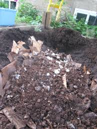 gardening with mushrooms champignons maison