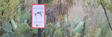 tucson native plants habitat at home tucson audubon society