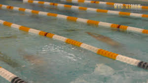 Wyoming wild swimming images University of wyoming athletics jpg