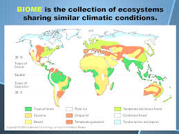 Map Showing Equator Biomes Of The World Beauteous Map World Biomes Evenakliyat Biz