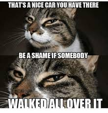 Nice Car Meme - that s a nice car you have there be a shameif somebody walked