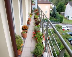 awesome apartment balcony garden ideas with metal railing fence