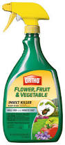 Homemade Pesticide For Vegetable Garden by Amazon Com Ortho 0331320 Flower Fruit And Vegetable Insect