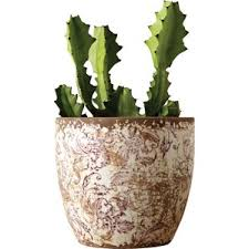 Plant Vase Planters Joss U0026 Main