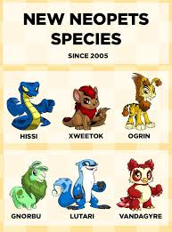 19 best neopets images on pinterest nostalgia childhood and faeries