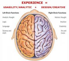 Anatomy Of The Brain And Functions Right Brain Vs Left Brain Functions Owlcation