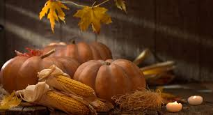 pumpkin squash happy thanksgiving day background autumn