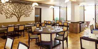 what is multi cuisine restaurant enjoy food at multi cuisine restaurant of hotel k tree kolhapur