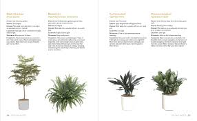 the manual of interior plantscaping workman publishing