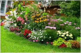 full image for cool of flowers easy landscaping ideas beginners