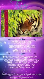 tiger symbolism tiger meaning tiger spirit totem