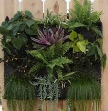 68 best vertical garden images on pinterest vertical gardens