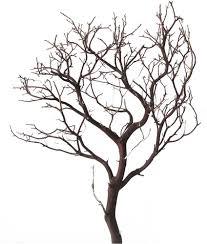 manzanita centerpieces manzanita branches 18 blooms and branches