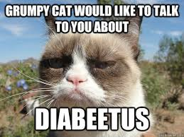 grumpy cat would like to talk to you about diabeetus wilford
