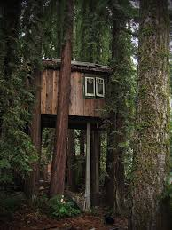 Treehouse Europe - 190 best tree houses images on pinterest treehouses awesome