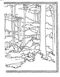 coloring book coloring habitat tall trees visual arts