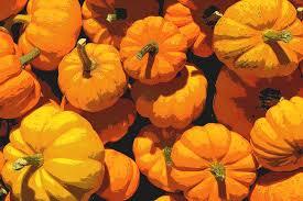 free illustration autumn autumn colours fall color free image