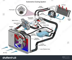 automotive cooling system infographic diagram showing stock